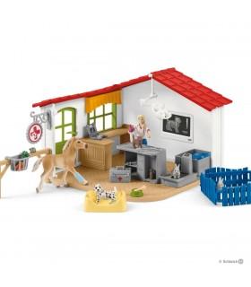 Cabinet Veterinar Cu Animale De Casa