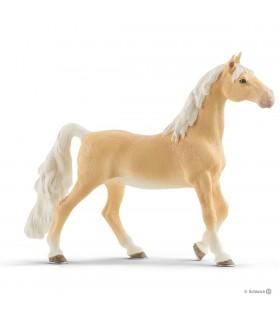 Iapa Americanu Saddlebred