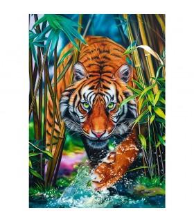 Tigru, 1000 Piese
