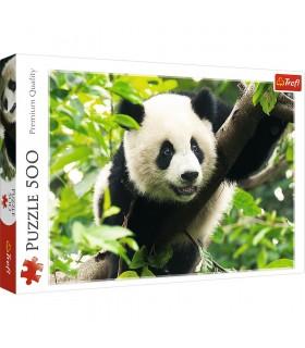 Panda Urias, 500 Piese
