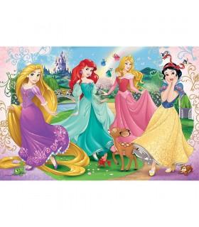 Frumoasele Printese Disney, 60 Piese