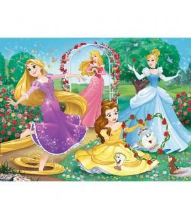 Printese Disney In Gradina Palatului, 30 Piese