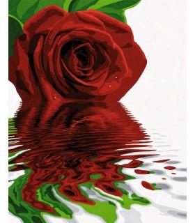 Trandafirul Rosu