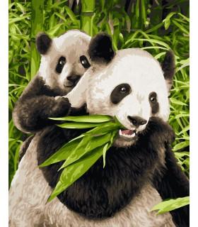 Ursuletii Panda
