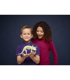 Schelet Triceratops Reflectorizant