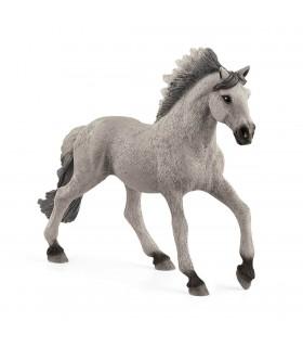 Armasar Sorraria Mustang