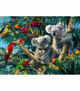Koala In Copac, 500 Piese
