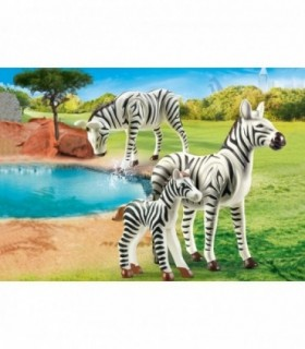 Zebre Cu Pui