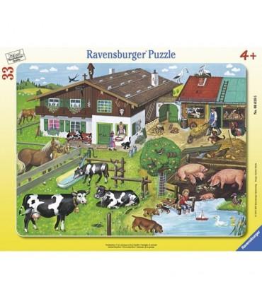 Familii De Animale, 33 Piese