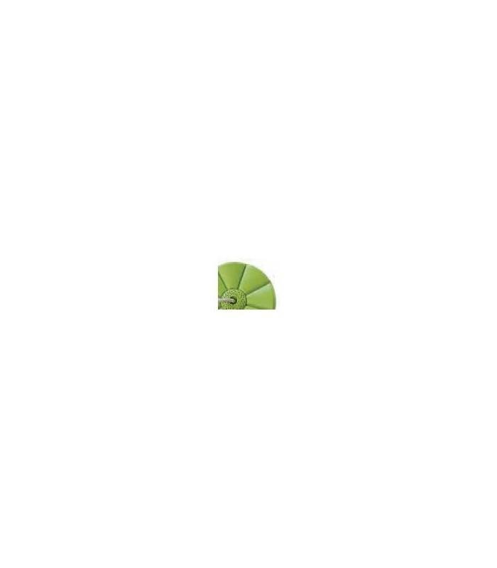 Monkey, Lime Green