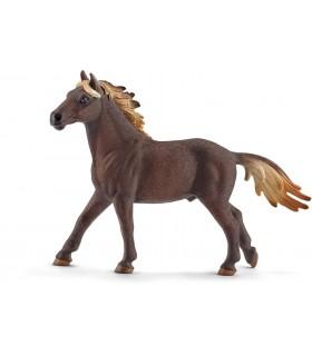 Armasar Mustang