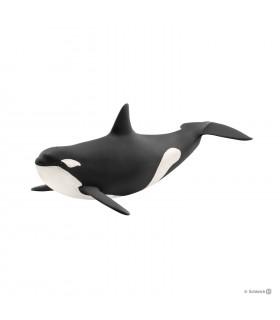 Balena Ucigasa