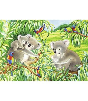 Koala Si Panda, 2 x 24 Piese