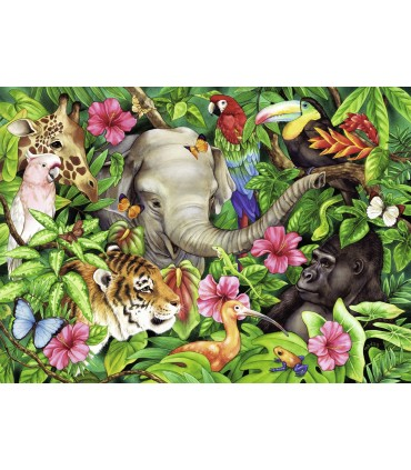 Prieteni Tropicali, 60 Piese