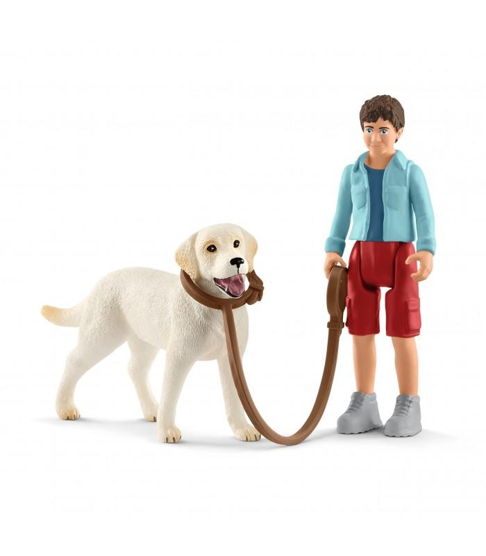 Plimbare Cu Labrador Retreiver