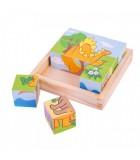 Puzzle Cuburi